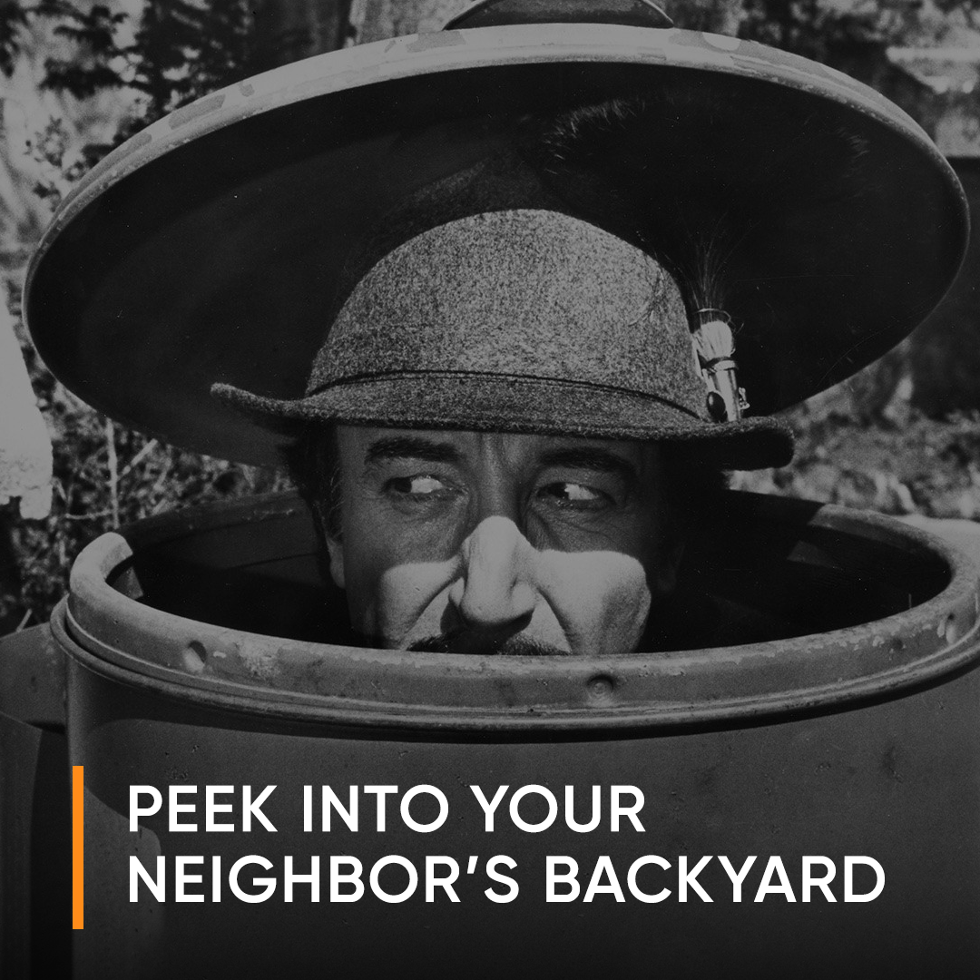 captures the voyeuristic innuendo of peeking into your neighbors backyard - voyeurism one element of searching for home
