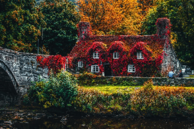 5 Reasons Fall Is The Perfect Time To Start Hunting For Your Home